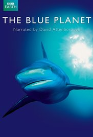 The Blue Planet (Dizi)