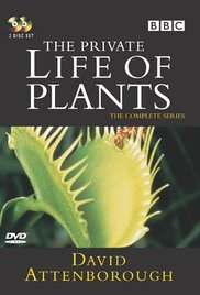 The Private Life of Plants (Dizi)